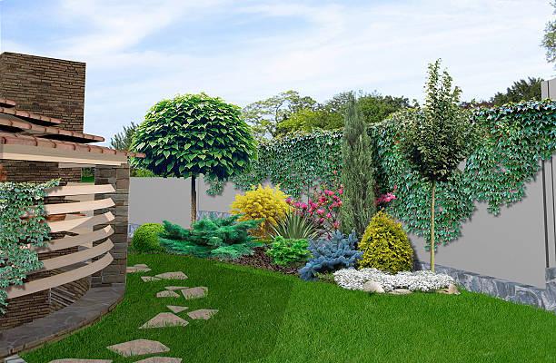 patio horticultural background, 3d rendering - trompetenbaum stock-fotos und bilder