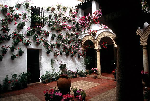 patio in cordoba stock photo