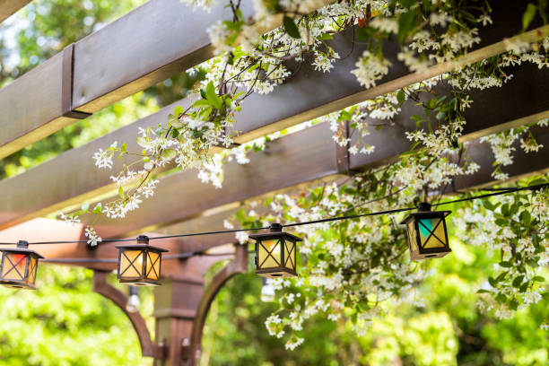 Patio outdoor spring garden in backyard of home with lantern lamps lights hanging from pergola canopy wooden gazebo and plants white flowers stock photo