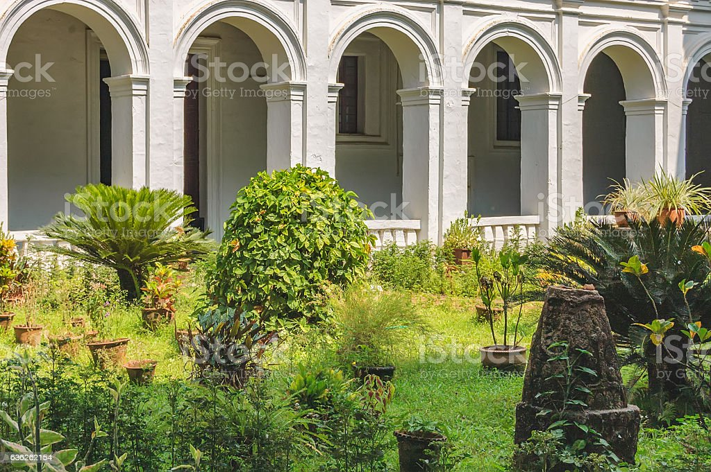 Patio with tropical plants in pots stock photo