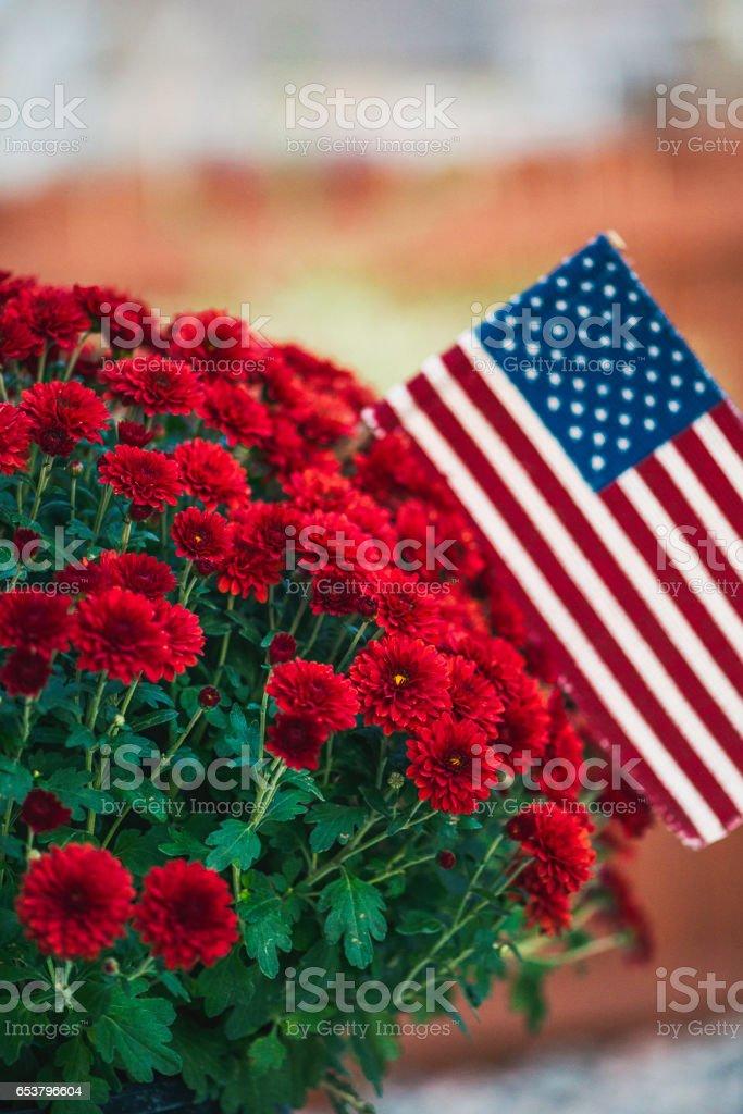 Patriotic American flag amongst vibrant red chrysanthemums stock photo