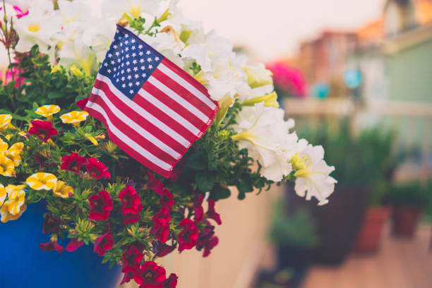 patriotic american flag background with vibrant petunias - memorial day stock photos and pictures