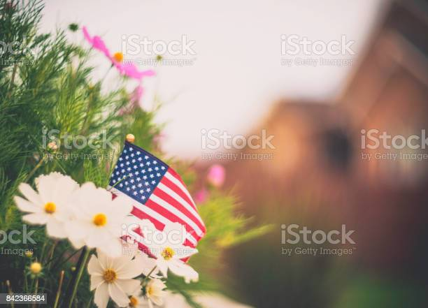 Patriotic american flag in garden background picture id842366584?b=1&k=6&m=842366584&s=612x612&h=z8ffun3vrxwfe6kfoczh3e5vt4ro1klejn3f3ddarek=