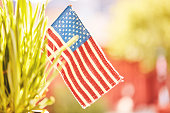 Patriotic American Flag in Nature for Memorial Day