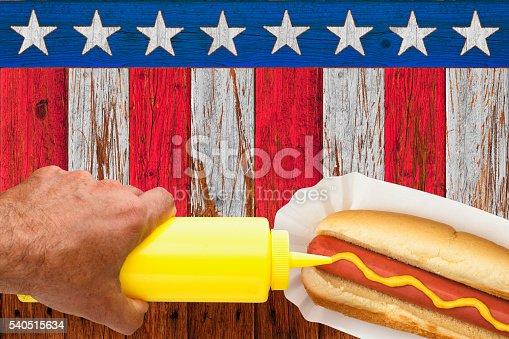 470765518istockphoto Patriotic Picnic Hotdog with Mustard 540515634