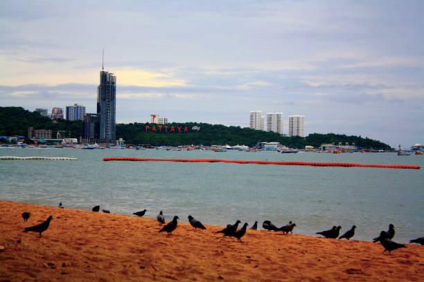 Pattaya Beach Landmark stock photo