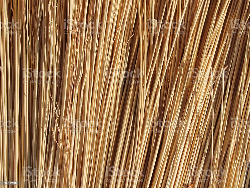 Pattern and texture of nature broom stock photo