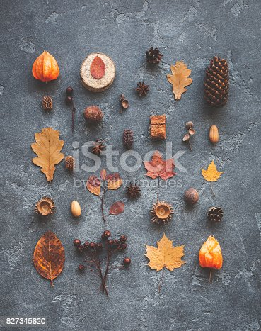 istock Pattern, autumn leaves, anise, pine cones. Flat lay, top view 827345620