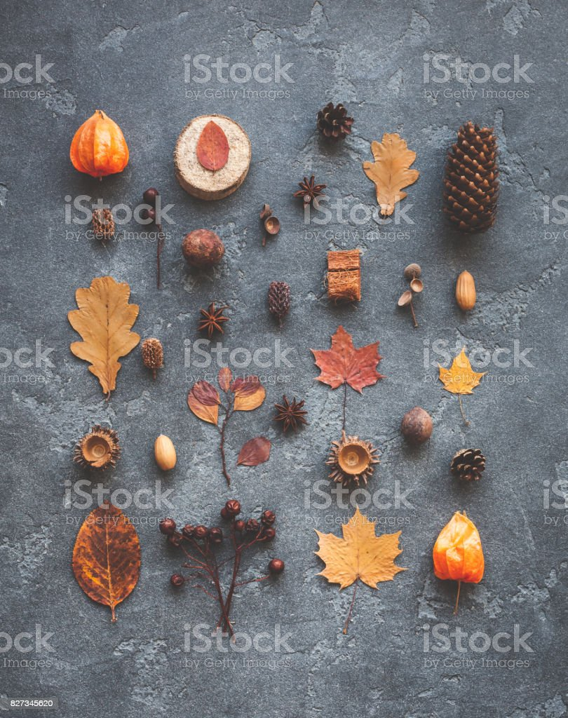 Pattern, autumn leaves, anise, pine cones. Flat lay, top view stock photo