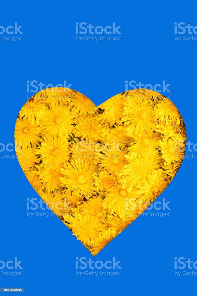 Pattern heart on dandelions royalty-free stock photo