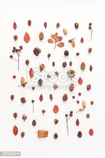 istock Pattern made of autumn things. Flat lay, top view 831302914