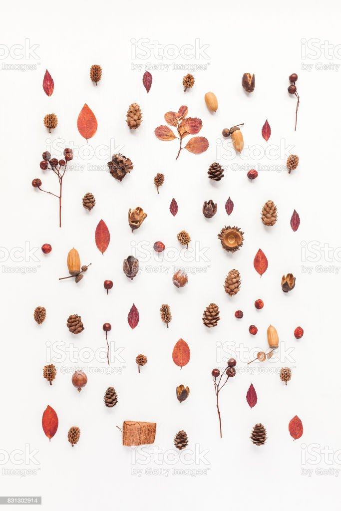 Modèle fait des choses automne. Vue plate Lapointe, top - Photo
