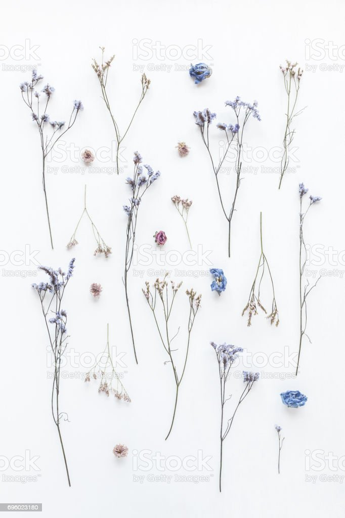 Flowers composition. Pattern made of dried flowers on white...