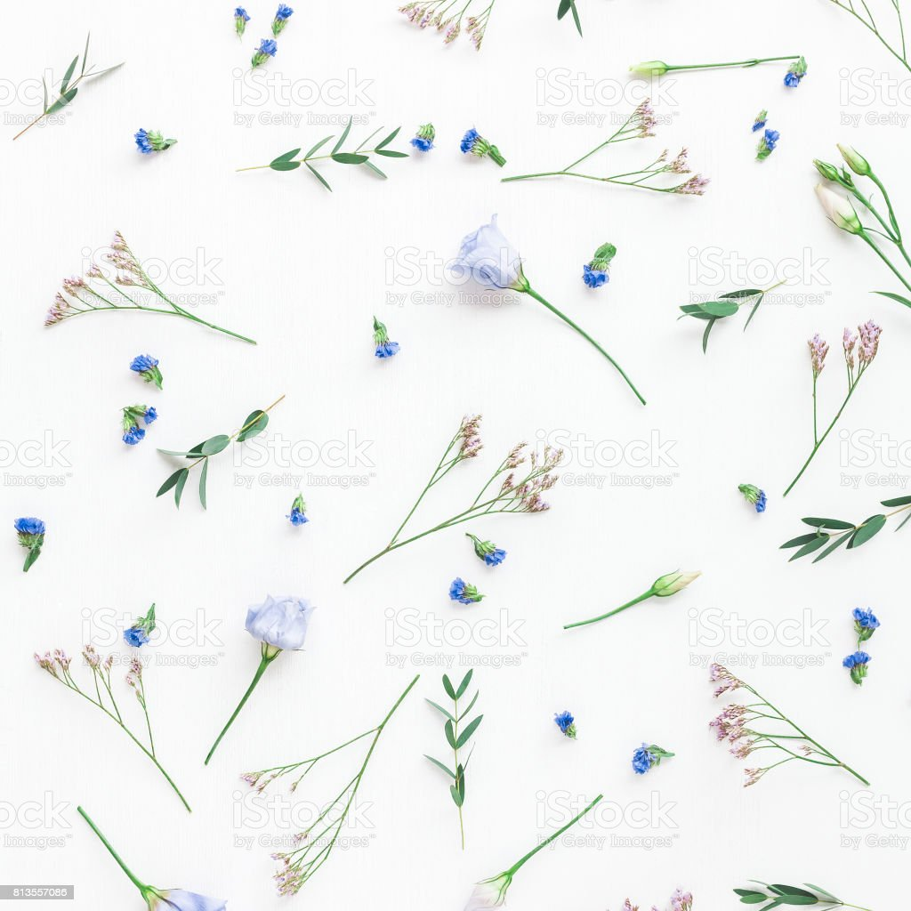 Pattern made of flowers, eucalyptus branches. Flat lay, top view stock photo