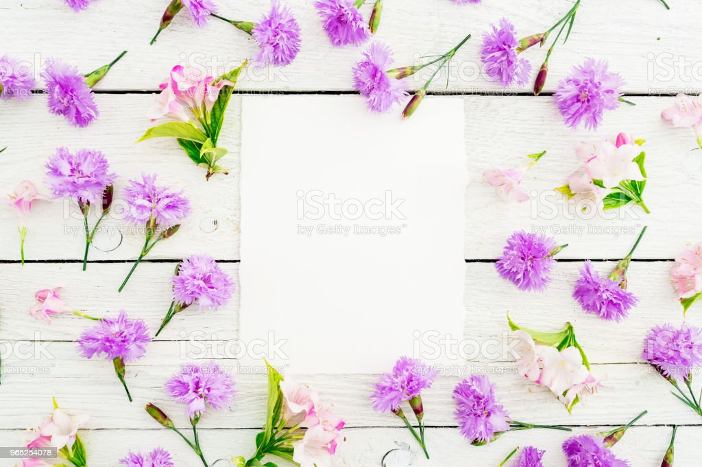 Pattern made of pink flowers and card on white background. Flat lay, top view. Background with paper card zbiór zdjęć royalty-free