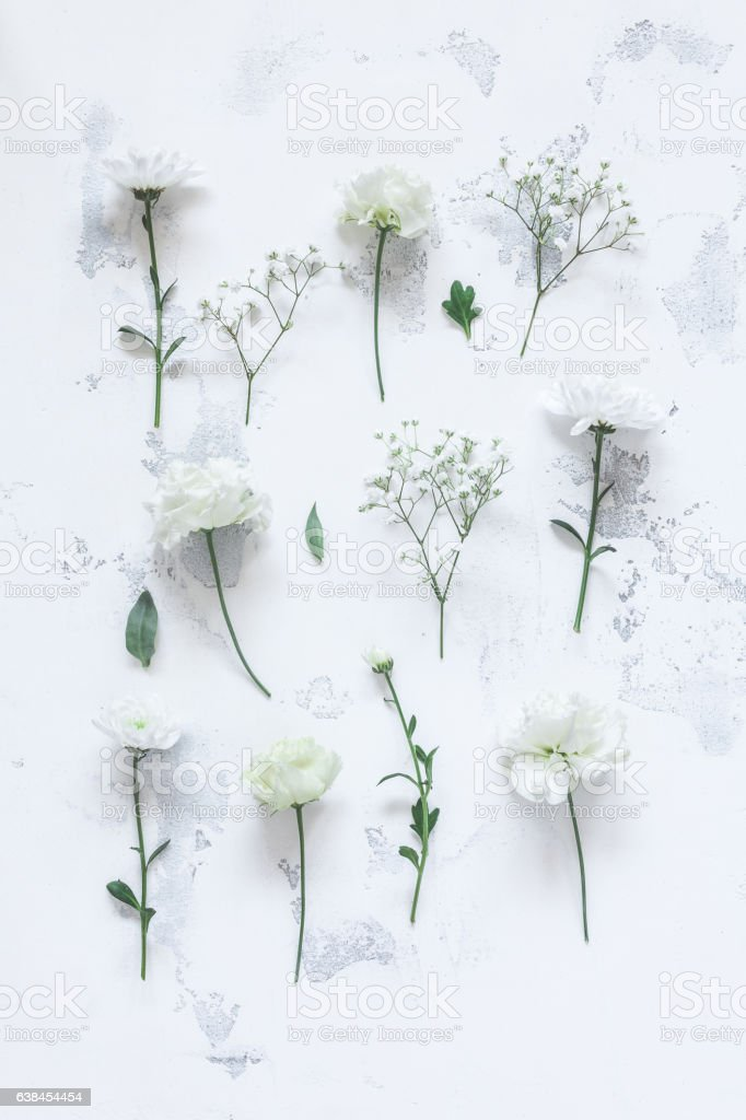 Pattern made of white flowers on gray background. Flat lay stock photo