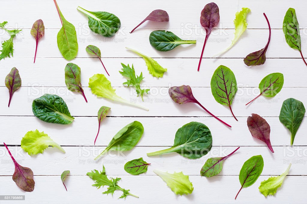 Pattern of green salad leaves, flat lay stock photo