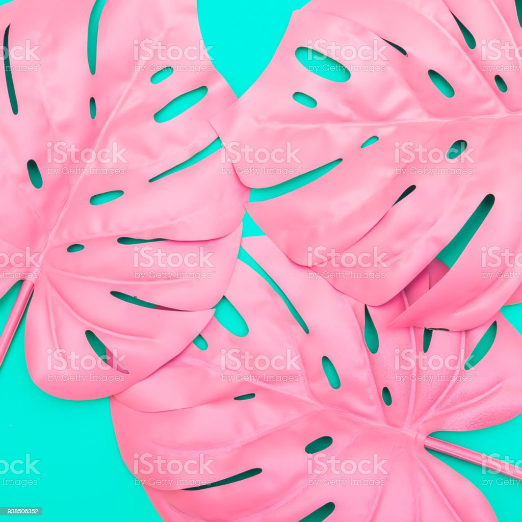 Pattern Of Pink Tropical Palm Leaves Of Monstera Stock Photo Download Image Now Istock Check this out in my redbubble store pattern of pink tropical palm leaves of monstera stock photo download image now istock