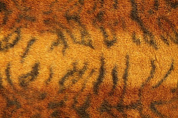 muster der tiger fell stoff für den hintergrund. - geparden bettwäsche stock-fotos und bilder