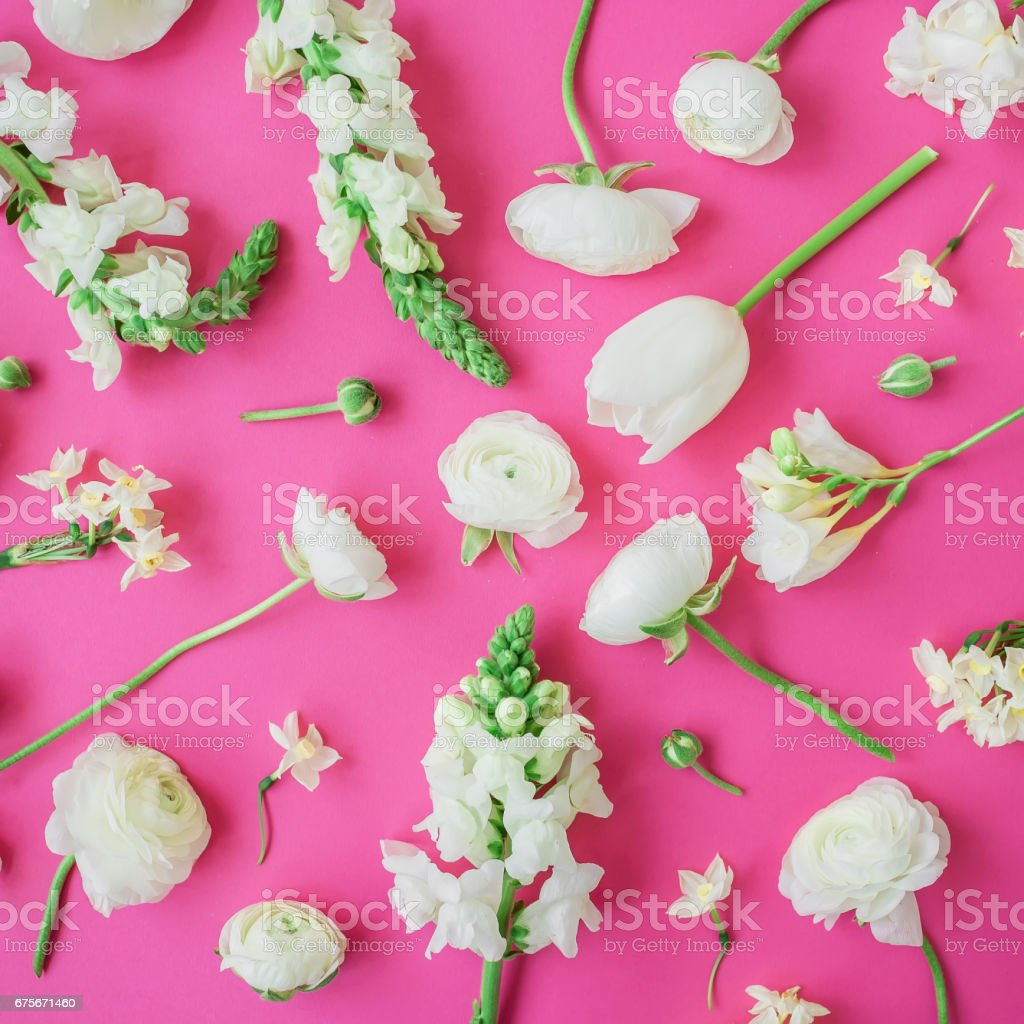 Motif de fleurs blanches sur fond rose. Vue plate Lapointe, haut. Floral fond. photo libre de droits