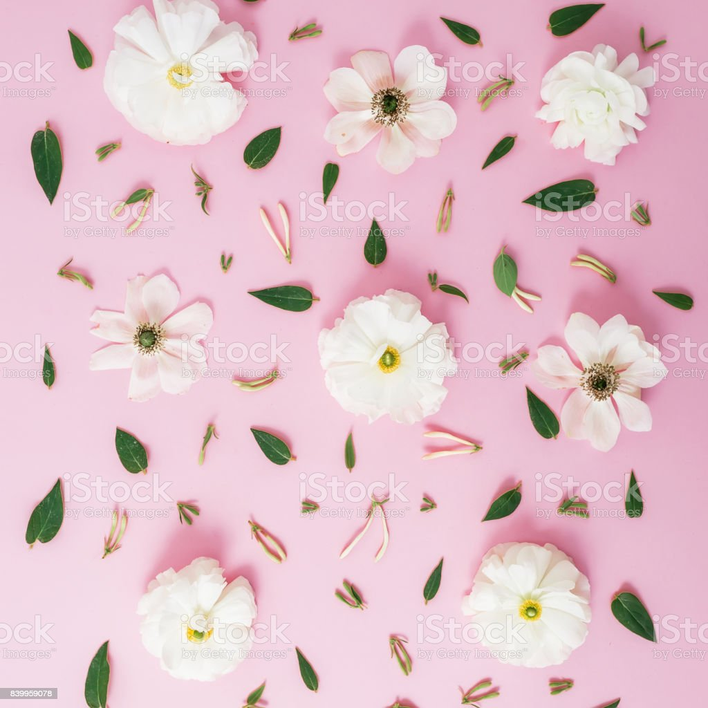 Fotografia De Patron De Flores Blancas En Fondo Rosa Vista Plana