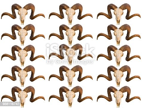 1151385192istockphoto Pattern texture skull animal ram with curled horns several rows of images blank on white isolated background 938116742