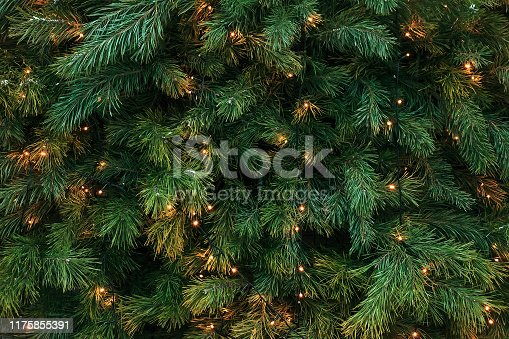 Pattern with green branches with pine needles illuminated. Texture of coniferous tree decorated garlands lights. Christmas holidays backdrop soft focus