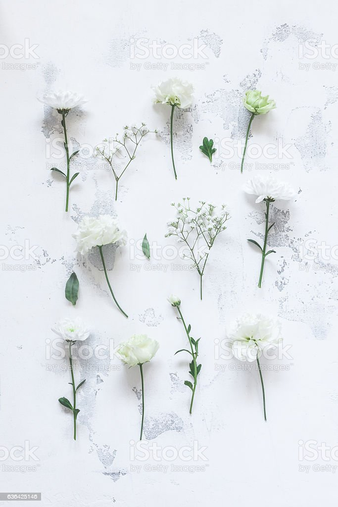 Pattern with white flowers on gray background. Flat lay stock photo