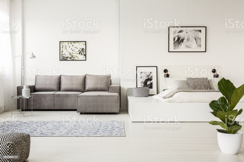 Pleasant Patterned Carpet In Front Of Grey Corner Couch In Open Space Bralicious Painted Fabric Chair Ideas Braliciousco