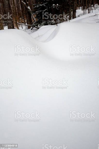 Photo of Patterns in deep snow drifts in woods of Rangeley, Maine