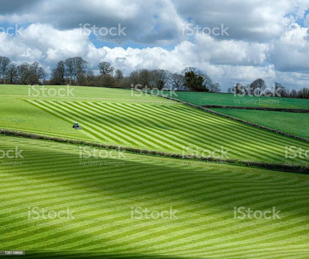 Patterns in Pasture Fields on Hillside Farm royalty-free stock photo