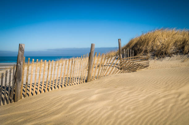 Patterns in the Sand Constant wind off the ocean creates patterns and ripples in the sand behind a fence on a Cape Cod beach. cape cod stock pictures, royalty-free photos & images