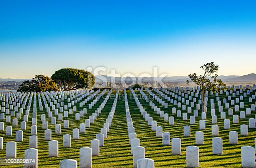 The tombstones create stunning geometric patterns at Rosecrans National Cemetery