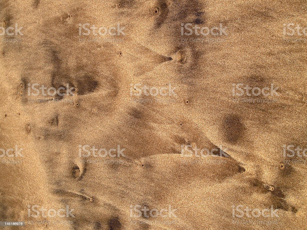 Patterns in wet sand royalty-free stock photo