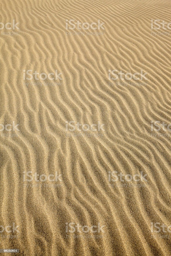 patterns left by the wind on a sand dune royalty-free stock photo