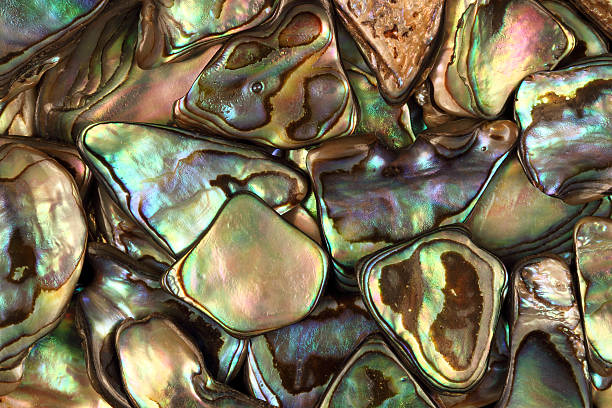 paua shell abstract - pink and orange seashell background stockfoto's en -beelden