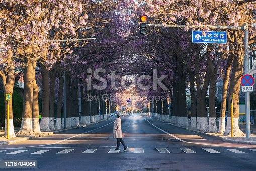 istock Paulownia flowers bloom on both sides of the highway in Beijing, China in spring, and women wearing masks cross the sidewalk 1218704064