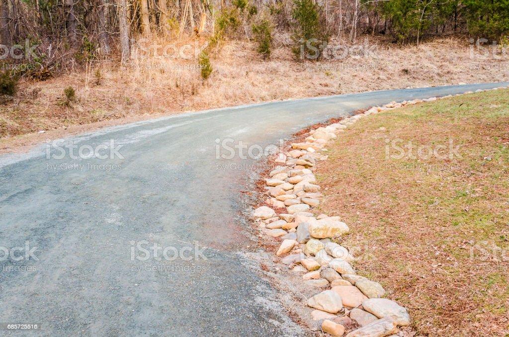 겨울에 빛 바위 늘어서 숲의 빈도 포장 royalty-free 스톡 사진