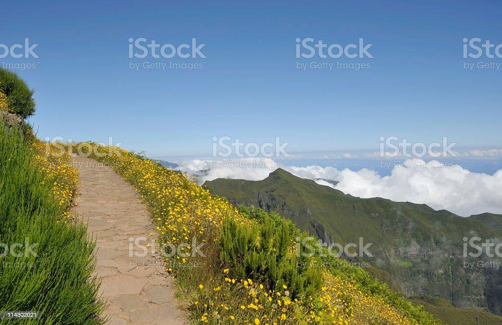 Paved hiking path leading to Pico Ruivo,Madeira Island stock photo