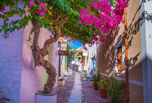 istock Paved narrow alley of Ano Syros in Syros island, Cyclades, Greece. Street view 1033233816