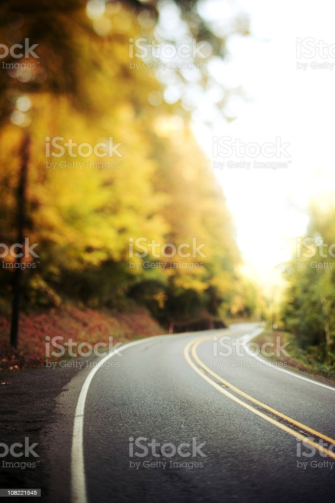 Paved road curving through autumn trees royalty-free stock photo