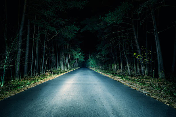 Paved road going through woods at night Night Road on dark forest. headlight stock pictures, royalty-free photos & images