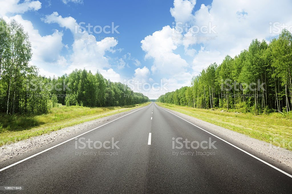 Paved road in the middle of the forest surrounded by trees royalty-free stock photo