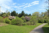 Highland park on a sunny day in May. Rochester, New York