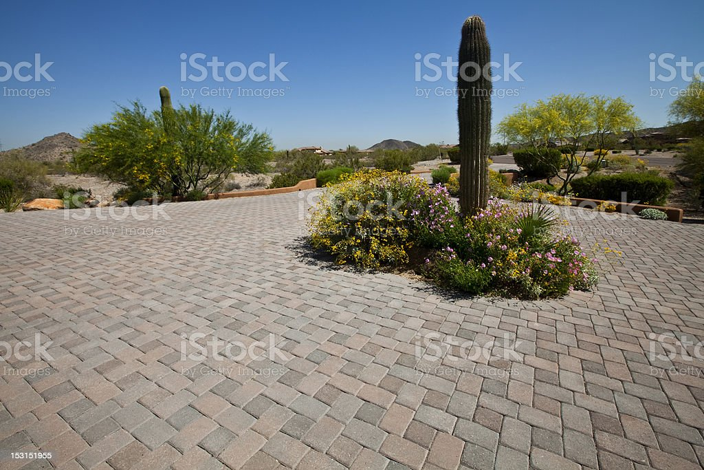 Paver Brick Driveway with Wild Flowers and Saguaro Cactus stock photo