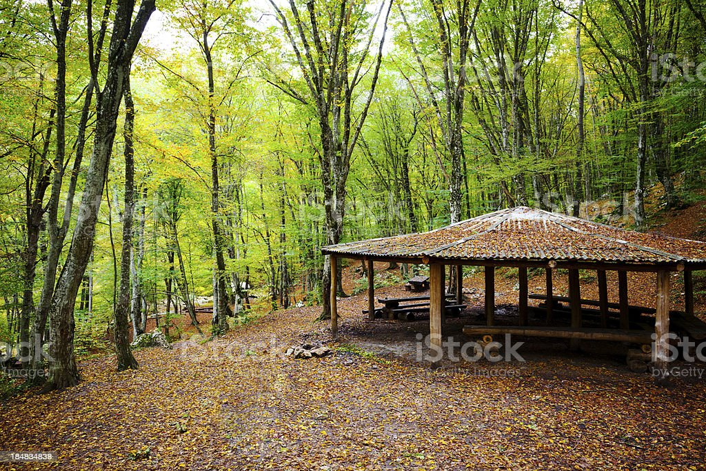 pavilion in forest royalty-free stock photo