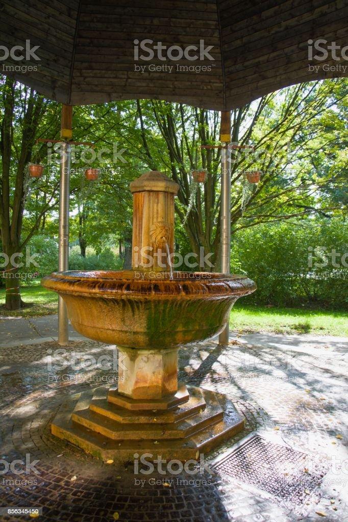 Pavilion of mineral water spring Antonius - Marianske Lazne (Marienbad) stock photo