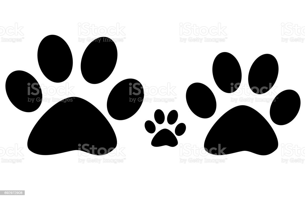 Paw family  Print on White Background. stock photo