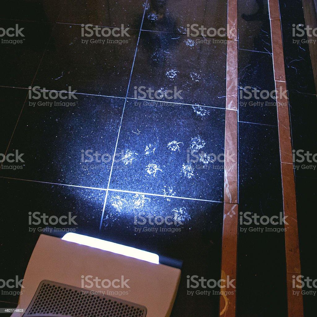 Paw Prints On Floor stock photo