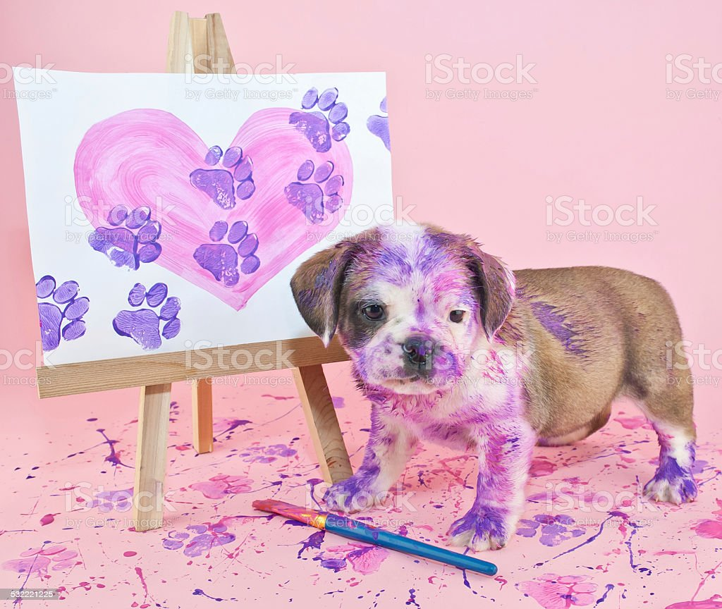 Paw Prints on Your Heart stock photo